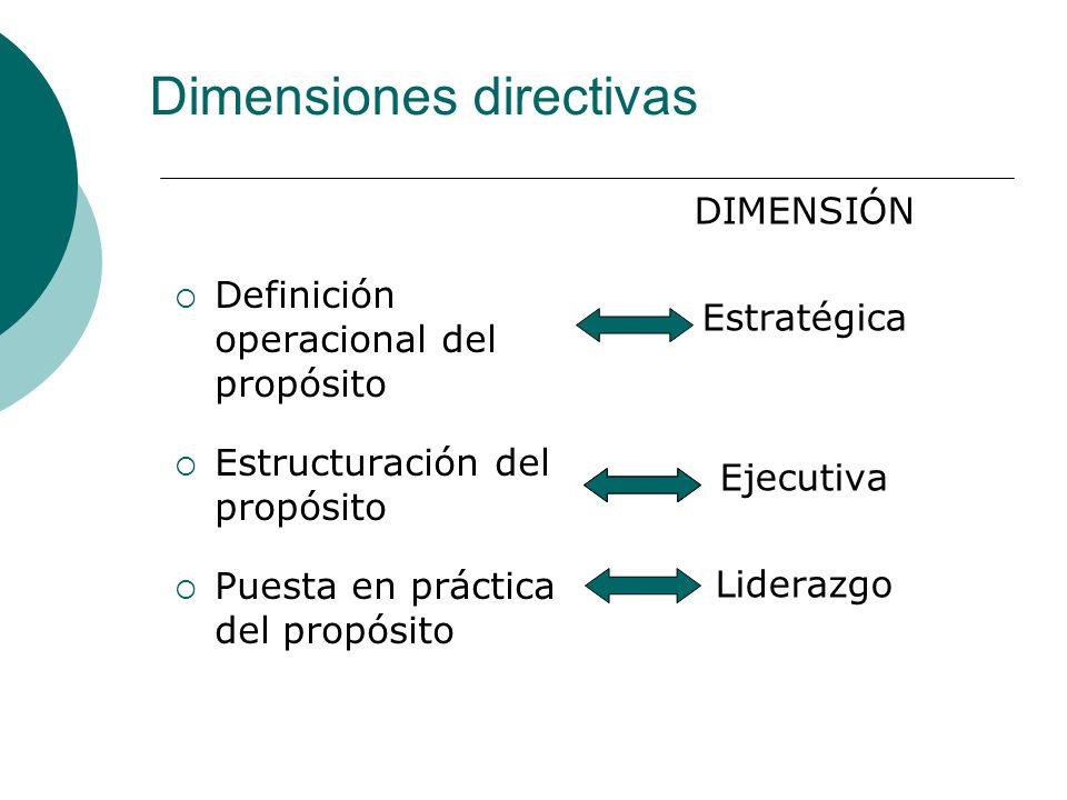 Dimensiones directivas