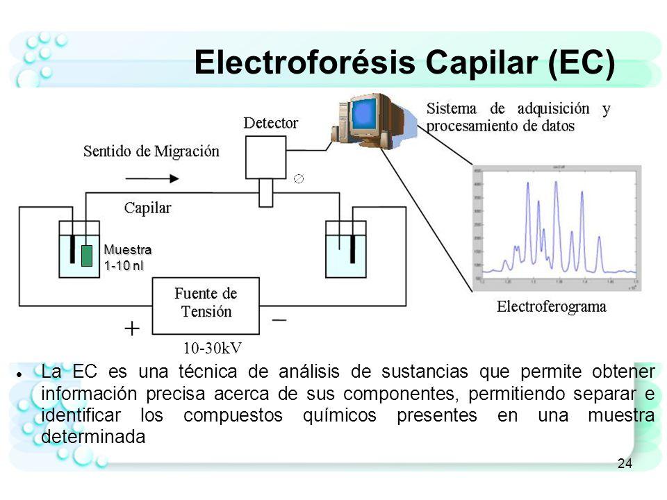 Electroforésis Capilar (EC)