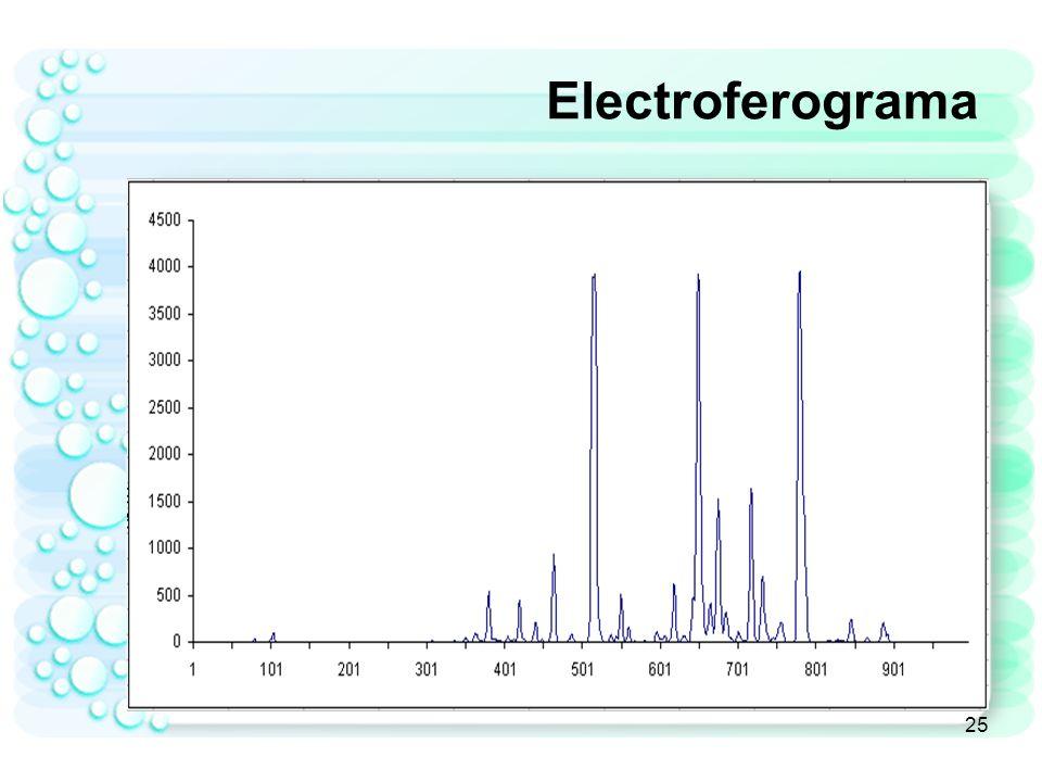 Electroferograma