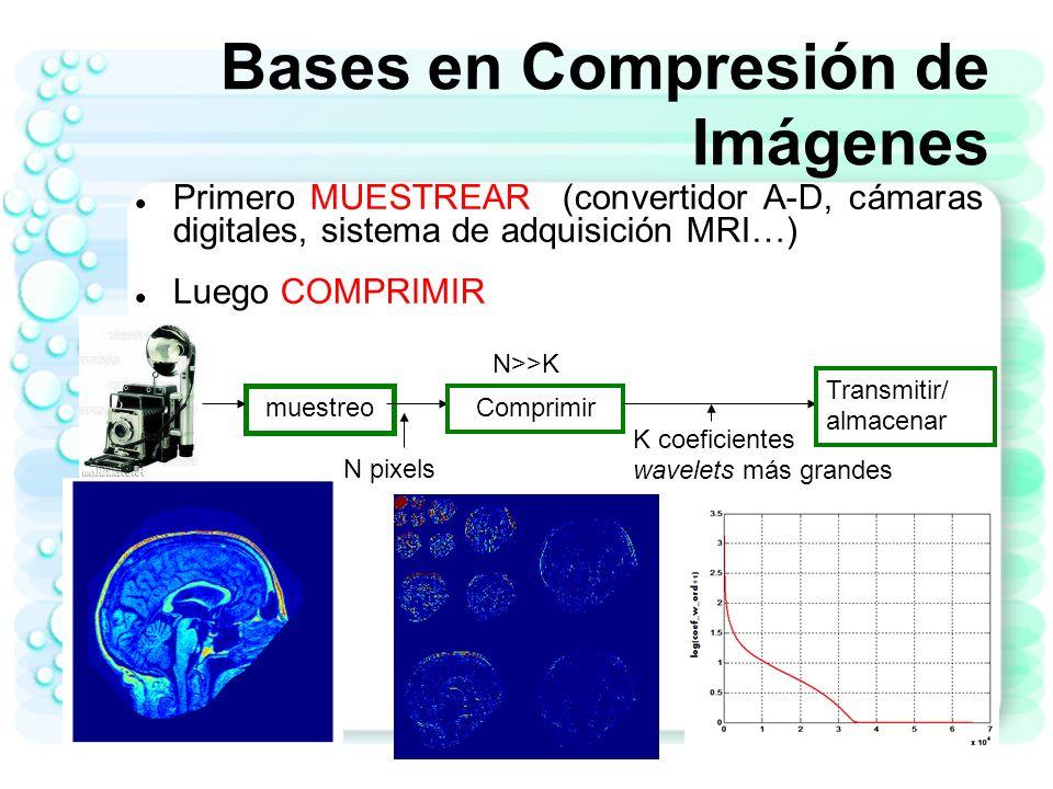 Bases en Compresión de Imágenes