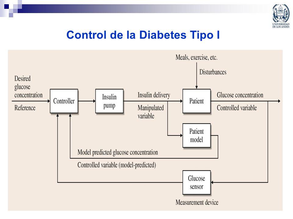 Control de la Diabetes Tipo I