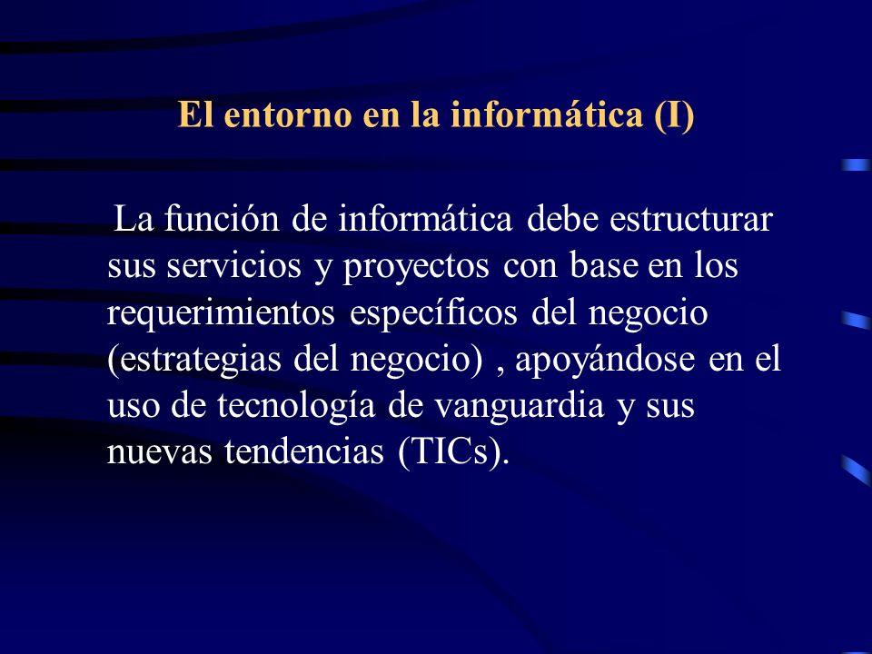 El entorno en la informática (I)