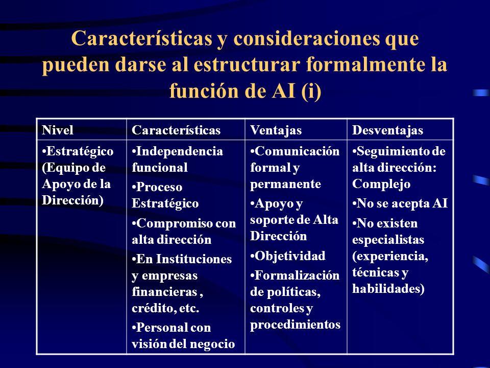 Características y consideraciones que pueden darse al estructurar formalmente la función de AI (i)