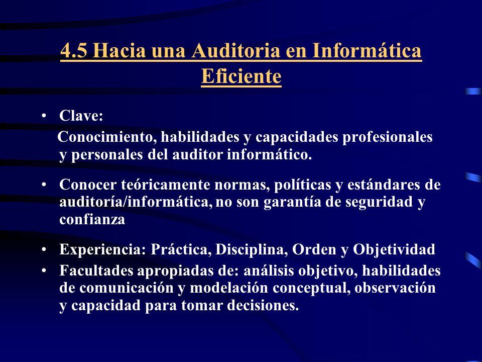 4.5 Hacia una Auditoria en Informática Eficiente