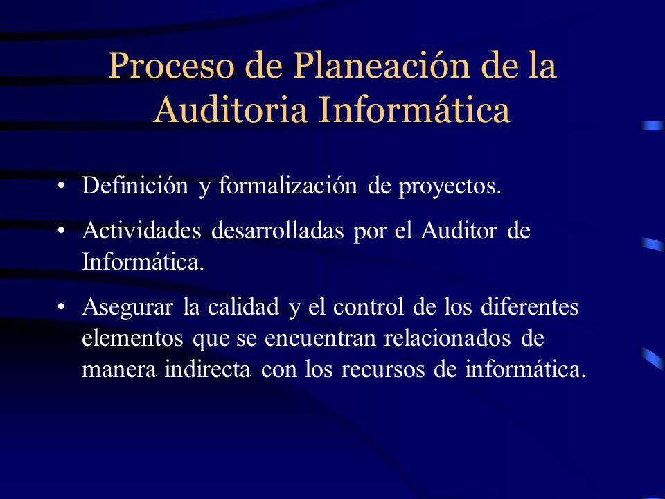 Proceso de Planeación de la Auditoria Informática