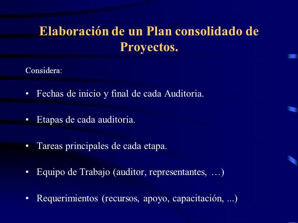 Elaboración de un Plan consolidado de Proyectos.