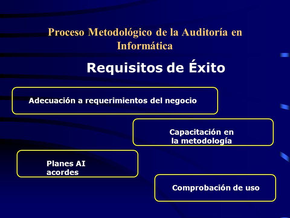 Proceso Metodológico de la Auditoría en Informática