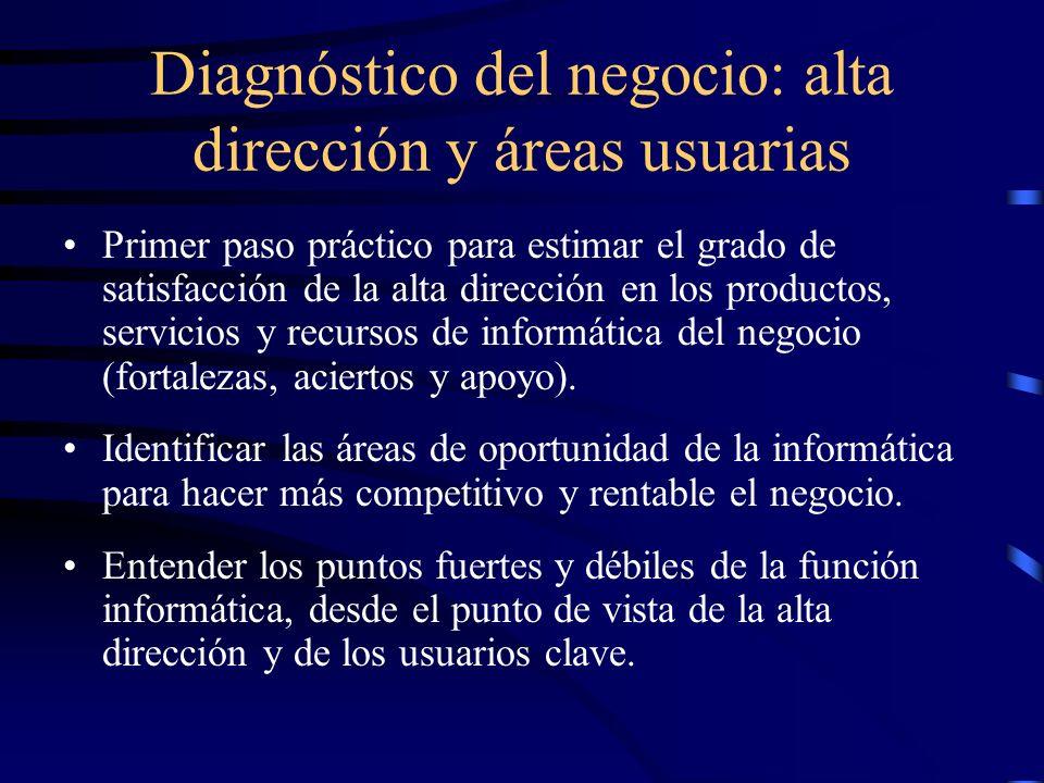 Diagnóstico del negocio: alta dirección y áreas usuarias