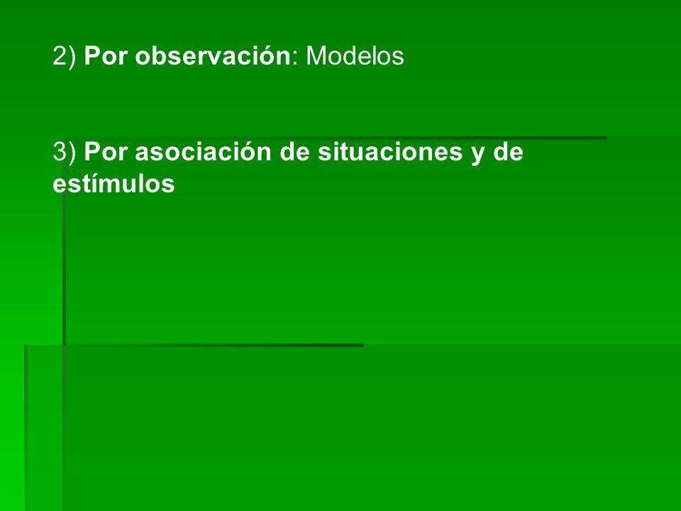2) Por observación: Modelos