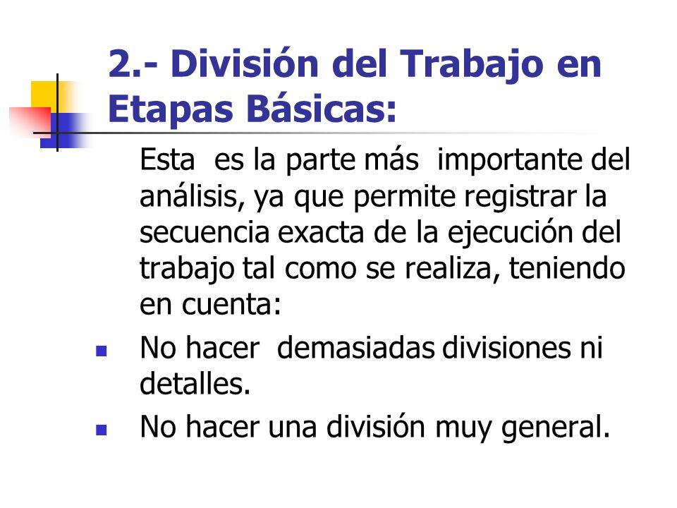 2.- División del Trabajo en Etapas Básicas: