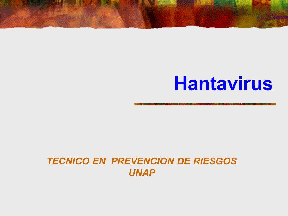 TECNICO EN PREVENCION DE RIESGOS