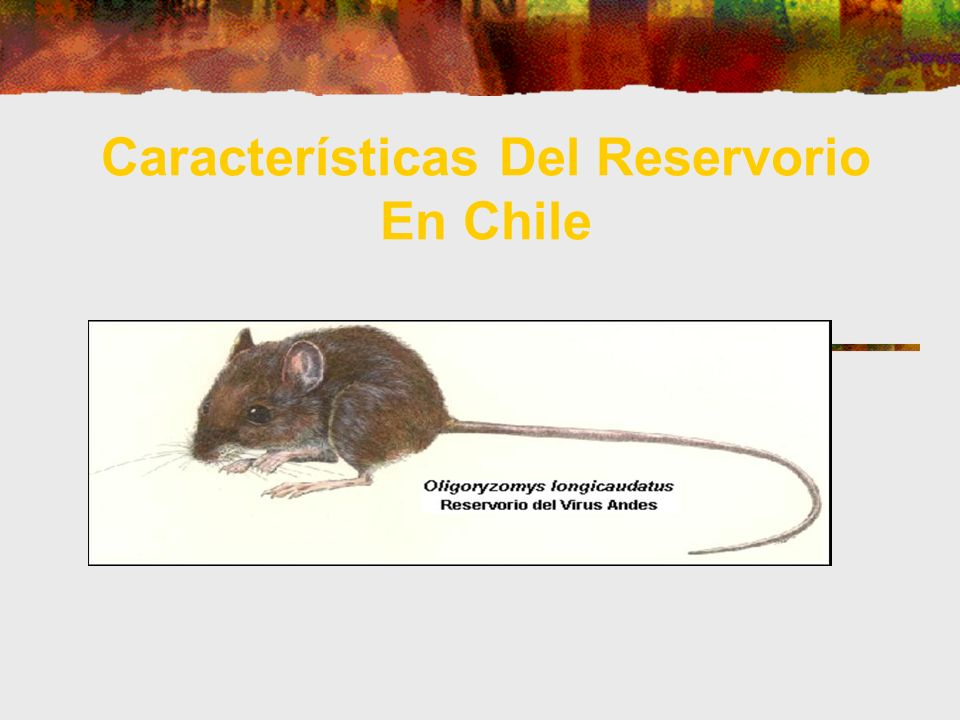 Características Del Reservorio En Chile