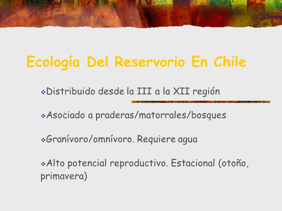 Ecología Del Reservorio En Chile