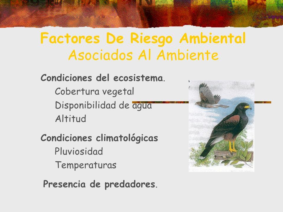 Factores De Riesgo Ambiental Asociados Al Ambiente