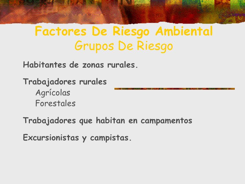 Factores De Riesgo Ambiental Grupos De Riesgo