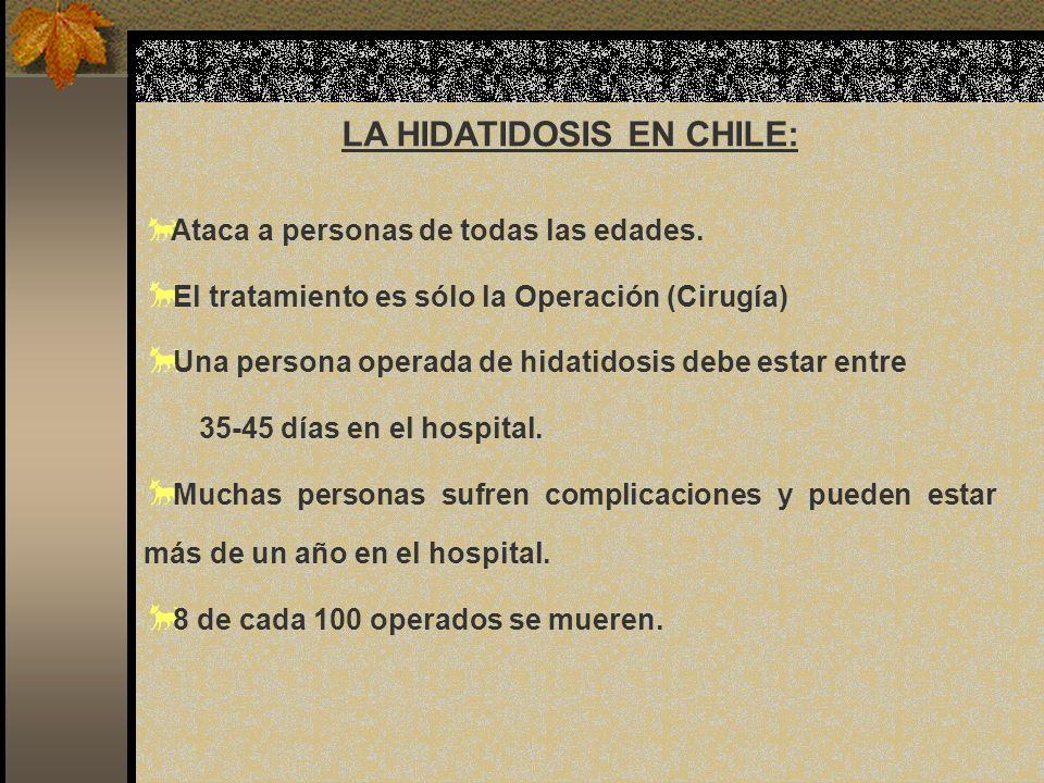 LA HIDATIDOSIS EN CHILE:
