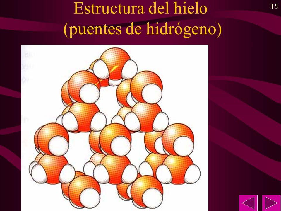 Estructura del hielo (puentes de hidrógeno)