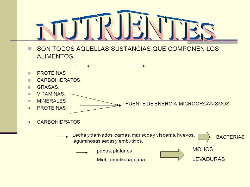 NUTRIENTES SON TODOS AQUELLAS SUSTANCIAS QUE COMPONEN LOS ALIMENTOS: