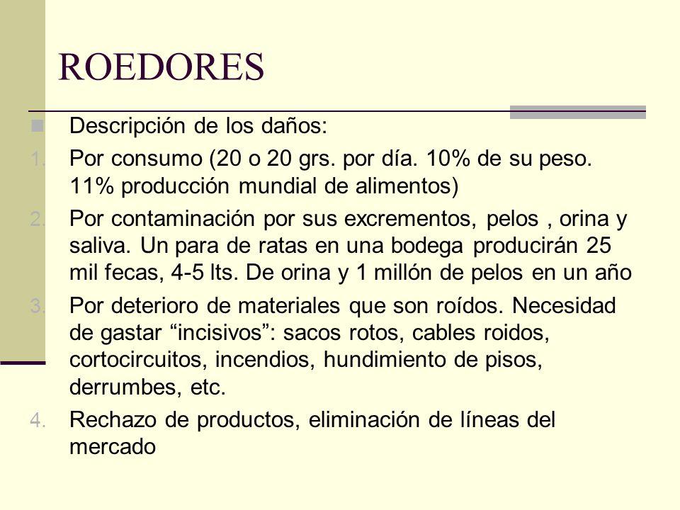 ROEDORES Descripción de los daños: