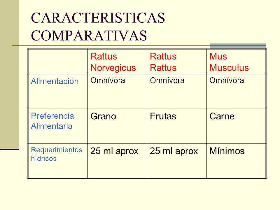 CARACTERISTICAS COMPARATIVAS