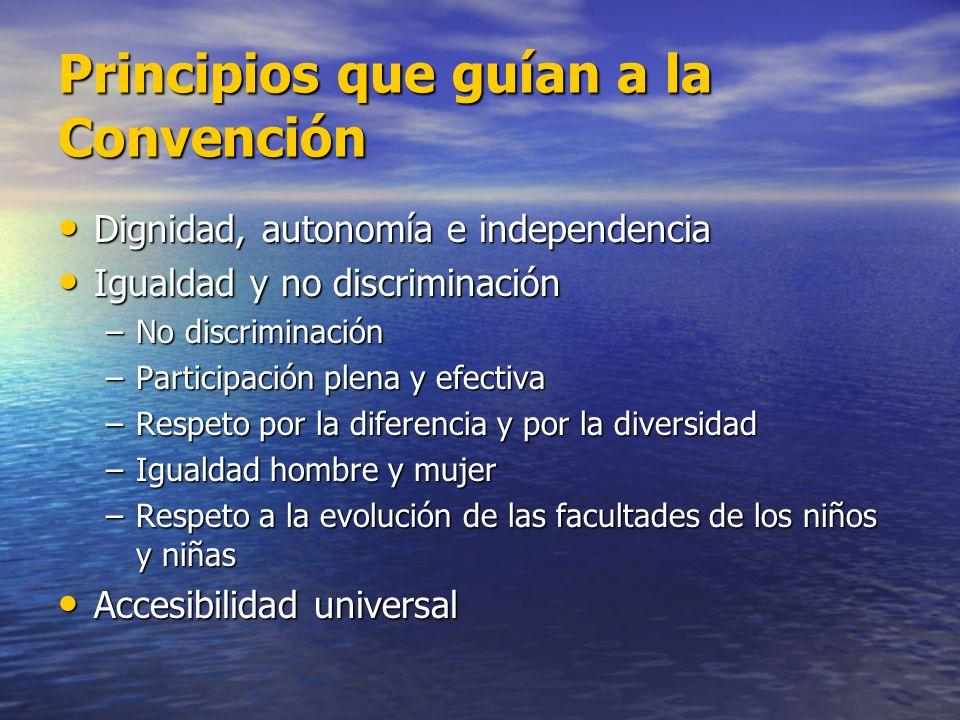 Principios que guían a la Convención