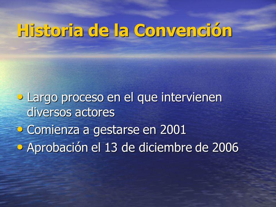 Historia de la Convención