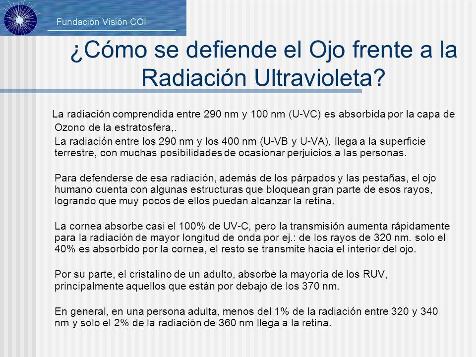 ¿Cómo se defiende el Ojo frente a la Radiación Ultravioleta