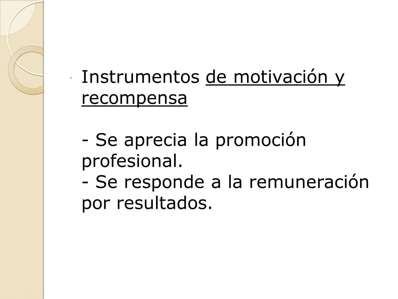Instrumentos de motivación y recompensa - Se aprecia la promoción profesional.
