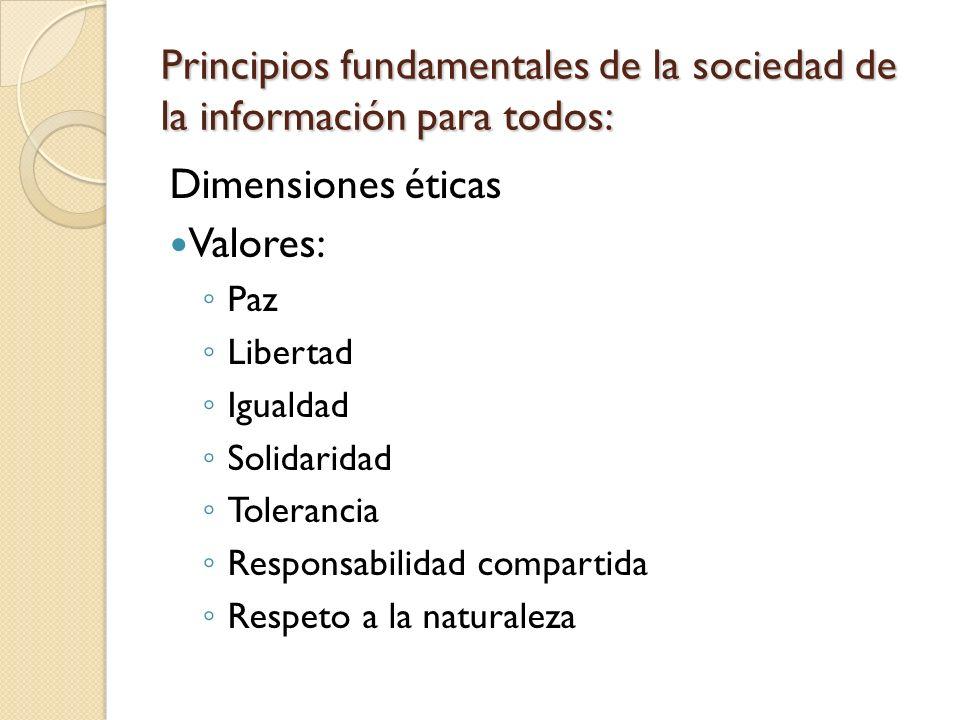 Principios fundamentales de la sociedad de la información para todos: