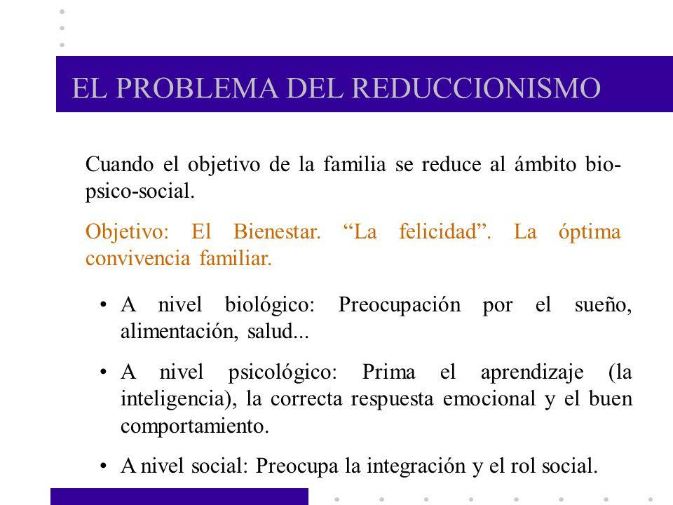 EL PROBLEMA DEL REDUCCIONISMO