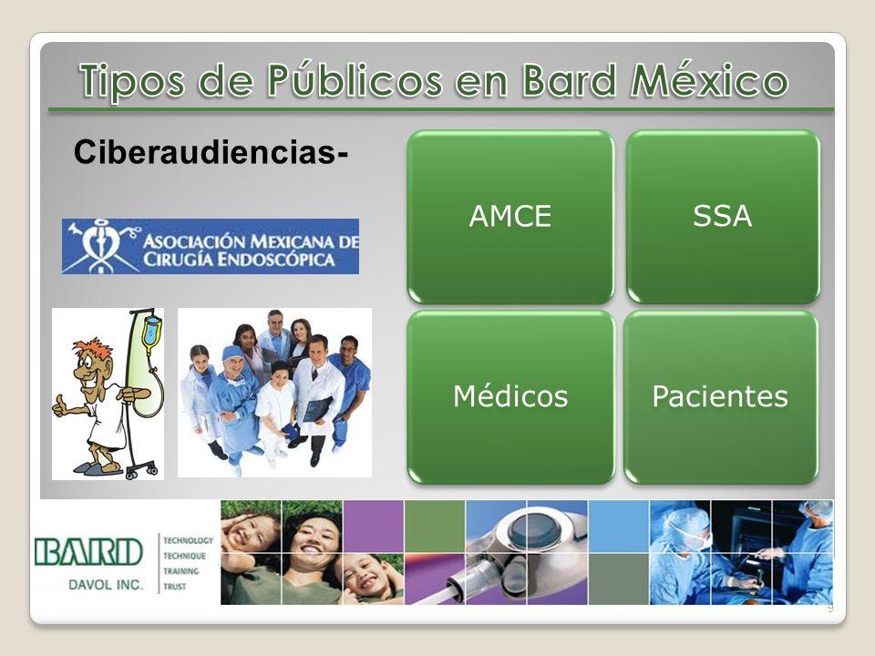 Tipos de Públicos en Bard México