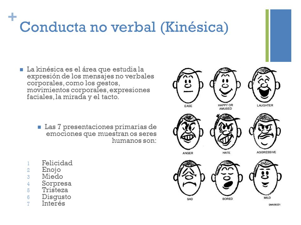 Conducta no verbal (Kinésica)