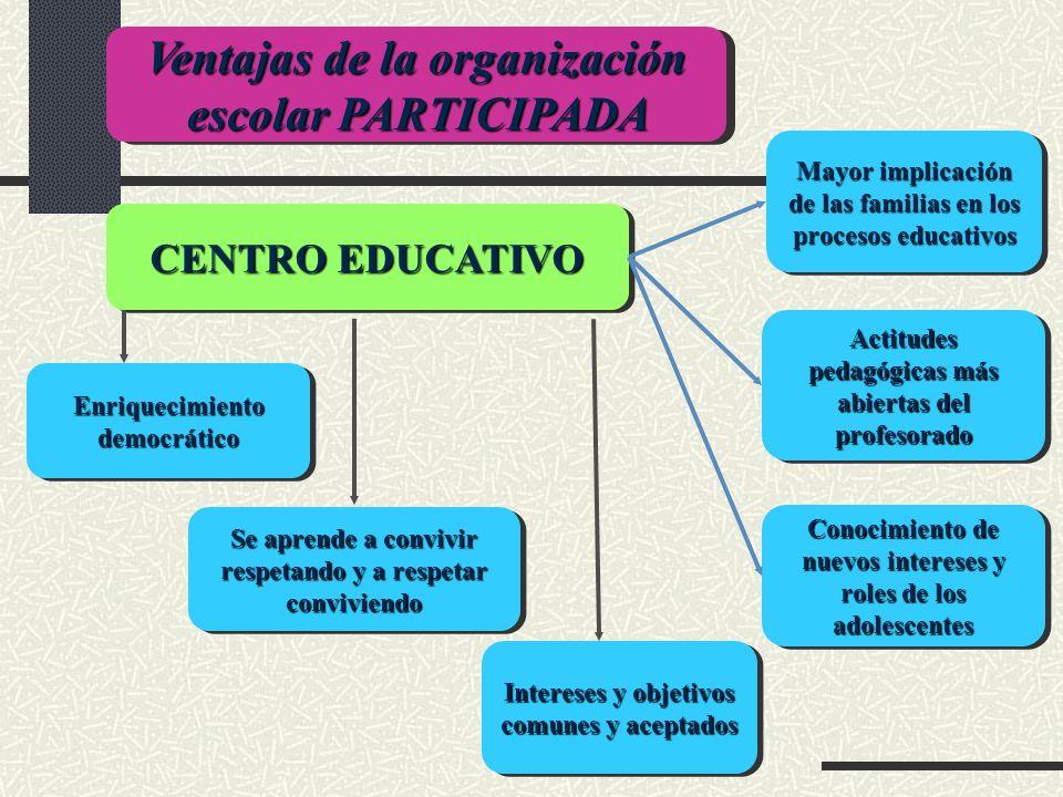 Ventajas de la organización escolar PARTICIPADA