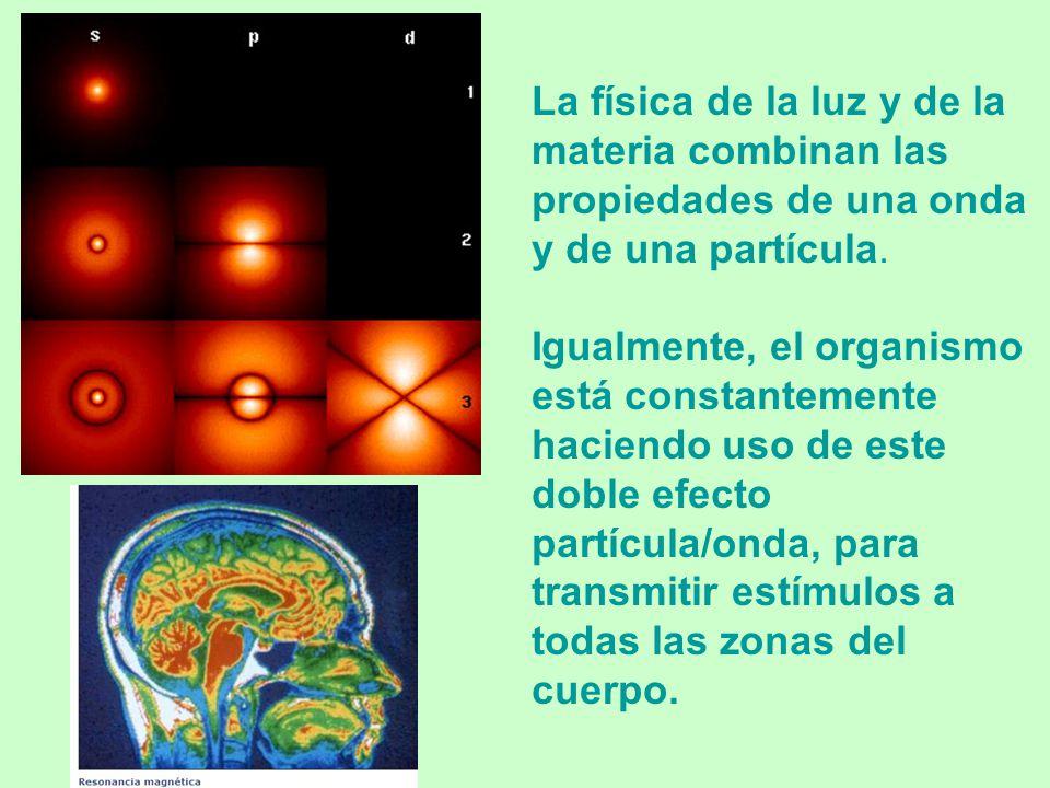 La física de la luz y de la materia combinan las propiedades de una onda y de una partícula.