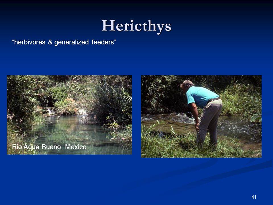 Hericthys herbivores & generalized feeders Rio Aqua Bueno, Mexico