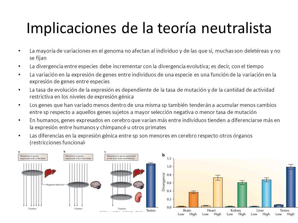 Implicaciones de la teoría neutralista