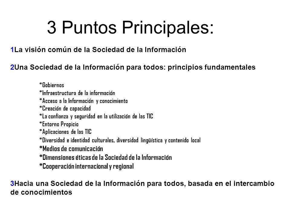 3 Puntos Principales: 1La visión común de la Sociedad de la Información. 2Una Sociedad de la Información para todos: principios fundamentales.