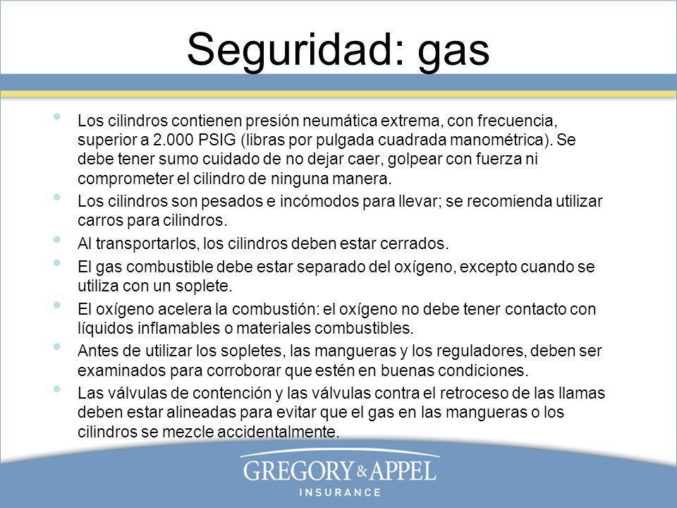 Seguridad: gas