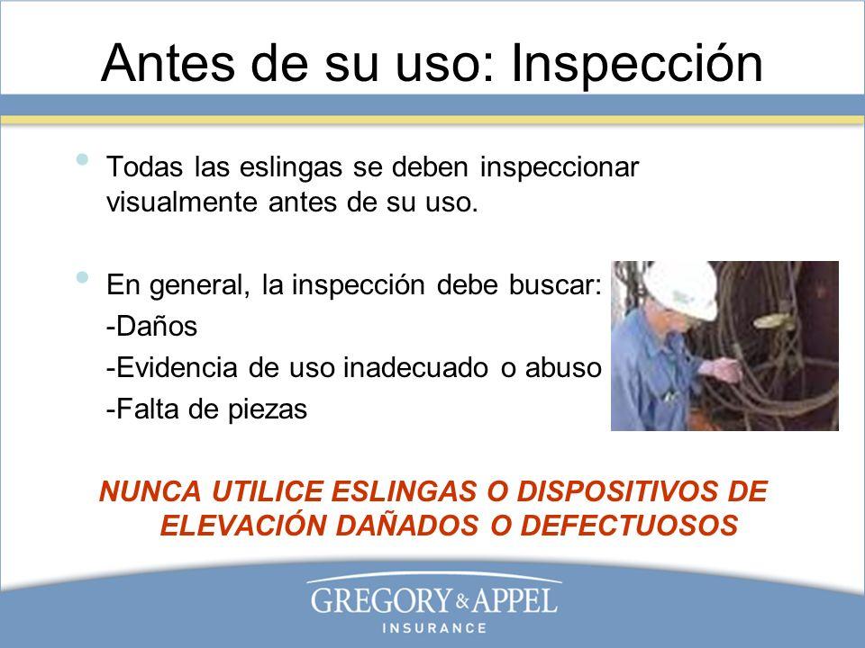 Antes de su uso: Inspección
