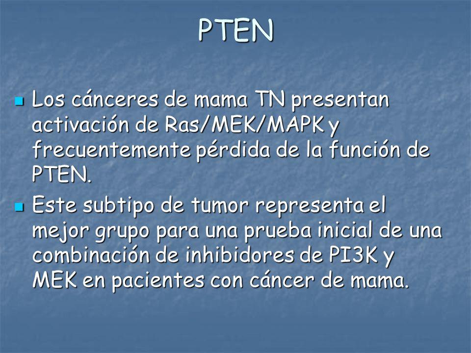 PTEN Los cánceres de mama TN presentan activación de Ras/MEK/MAPK y frecuentemente pérdida de la función de PTEN.