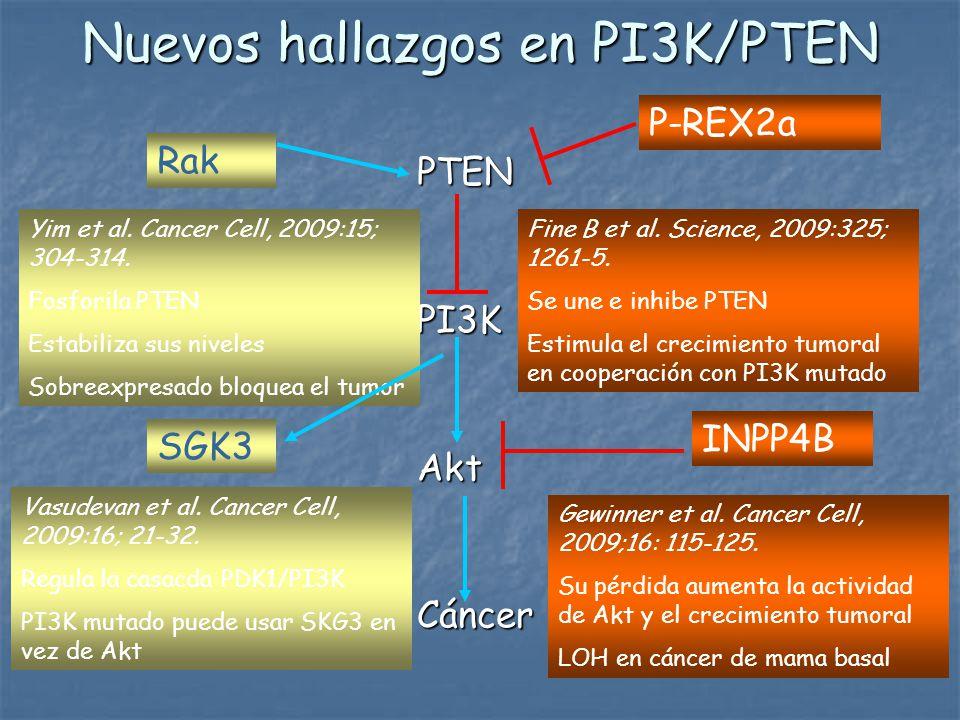 Nuevos hallazgos en PI3K/PTEN