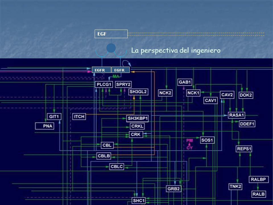 La perspectiva del ingeniero