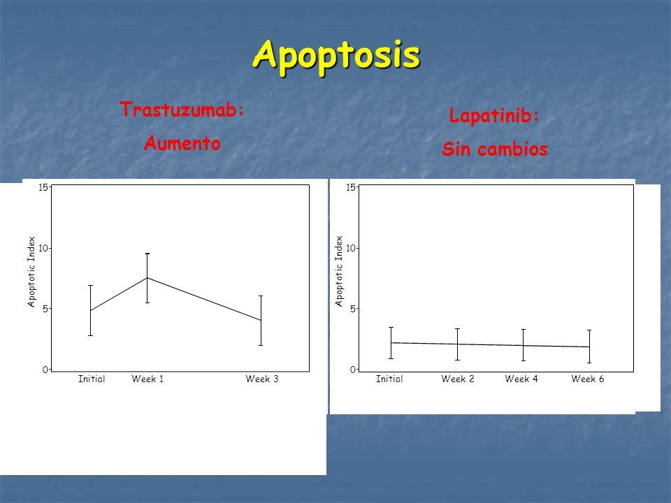 Apoptosis Trastuzumab: Lapatinib: Aumento Sin cambios P=0.03 P=NS 15