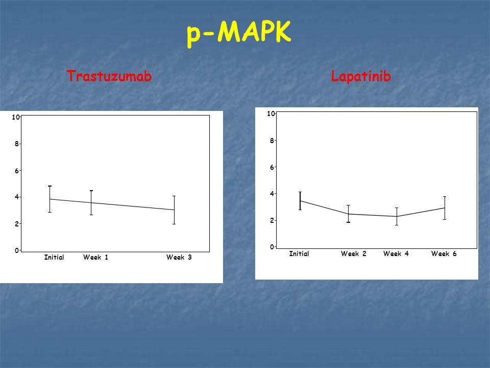 p-MAPK Trastuzumab Lapatinib P=NS P=0.02 10 10 8 8 6 6 4 4 2 2 Initial