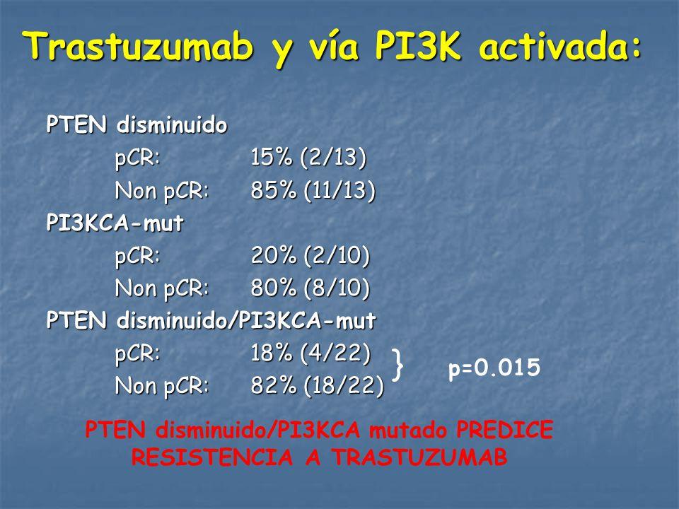 Trastuzumab y vía PI3K activada: