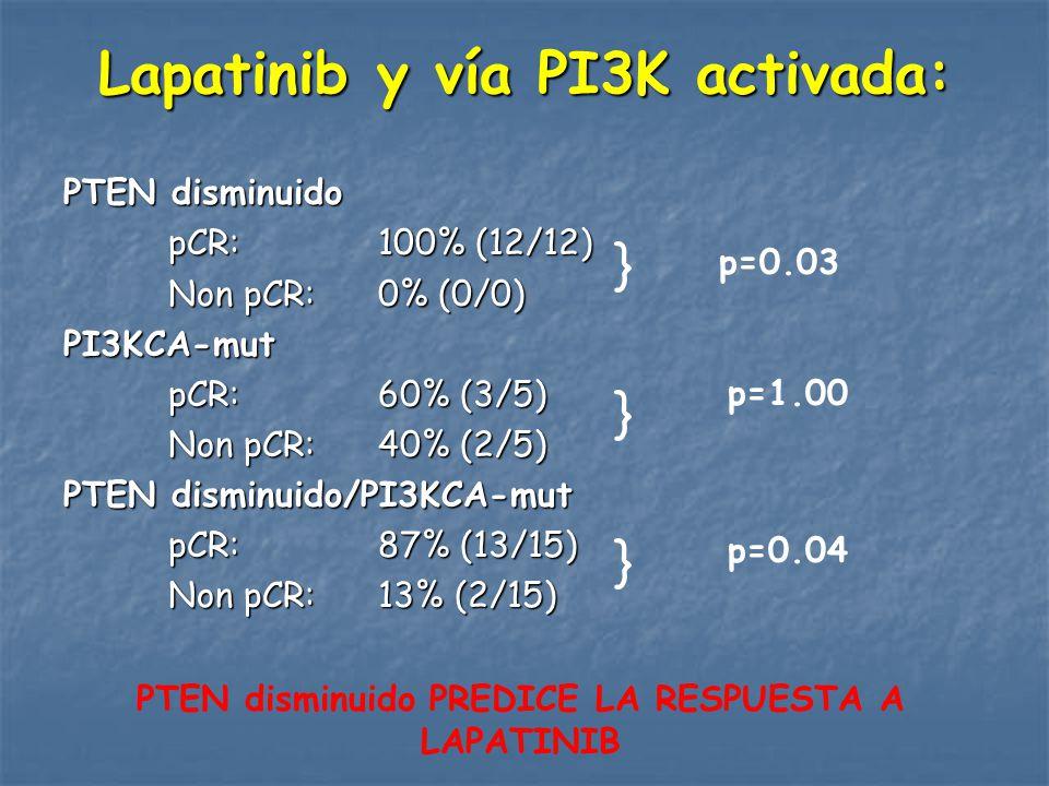 Lapatinib y vía PI3K activada: