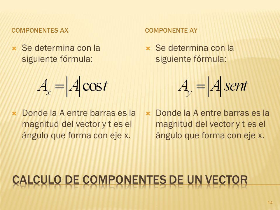 Calculo de componentes de un vector