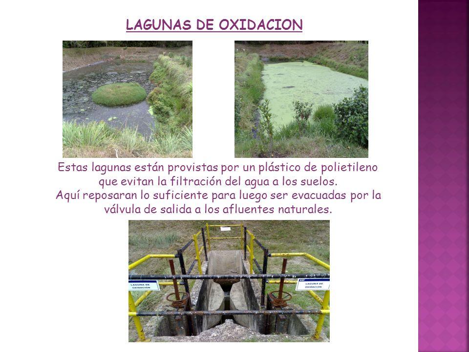 LAGUNAS DE OXIDACION Estas lagunas están provistas por un plástico de polietileno que evitan la filtración del agua a los suelos.