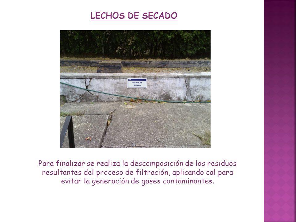 LECHOS DE SECADO