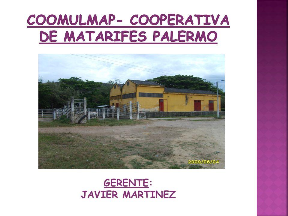 COOMULMAP- COOPERATIVA DE MATARIFES PALERMO